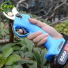 Light Small Rechargeable Branch Pruner for Fruit Garden