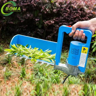 BOMA TOOLS Lightweight Tea Picker for Large Tea Garden