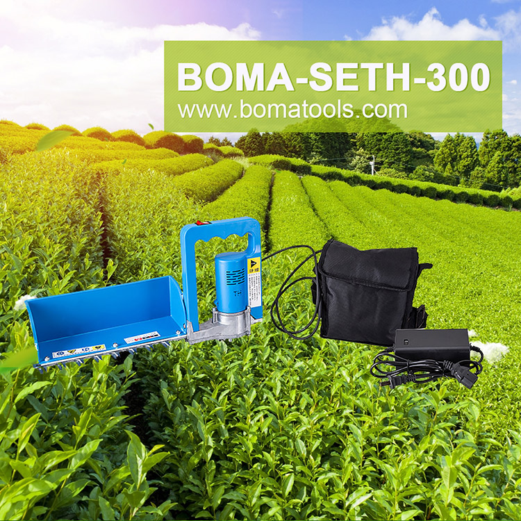 Hot Sale Battery Powered Tea Plucking Machines for Tea Plantation From BOMA Company