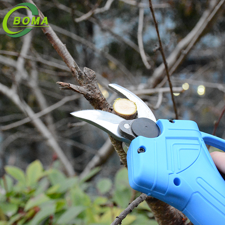 BOMA Light Small Battery Powered Pruner for Farmland