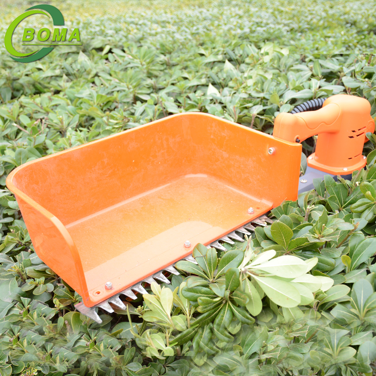 China Factory Directly Sale Single Man Tea Cutting Machine for Tea Association