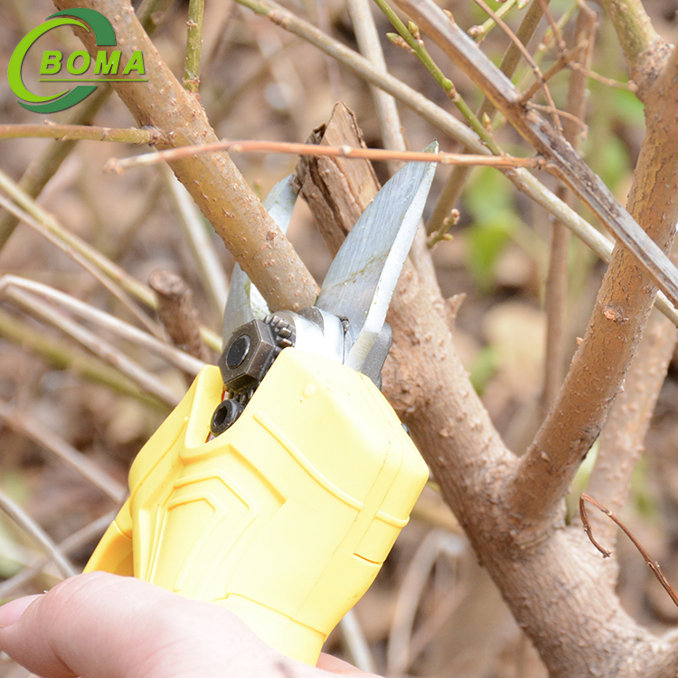 2019 Special Design Easy To Take Electric Pruning Shears for Tea Plantation