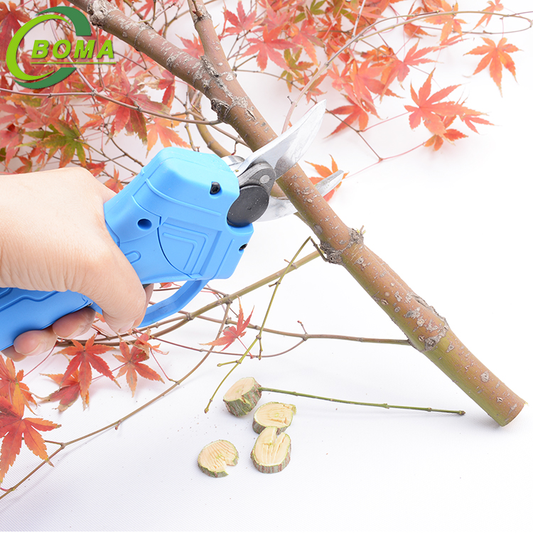 2019 Special Design Easy To Operate Garden scissors pruner for Trimming Tea Branches